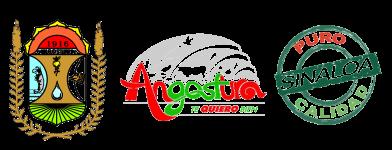 H. Ayuntamiento de Angostura