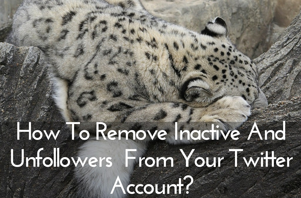 How To Remove Inactive And Unfollowers From Your Twitter Account?