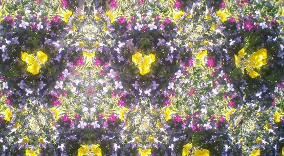 kaleidoscope mental illness sin and virtue
