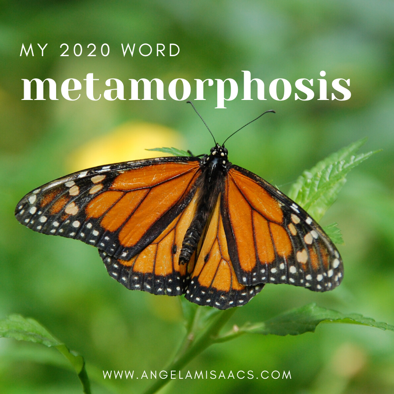 My 2020 Word: Metamorphosis