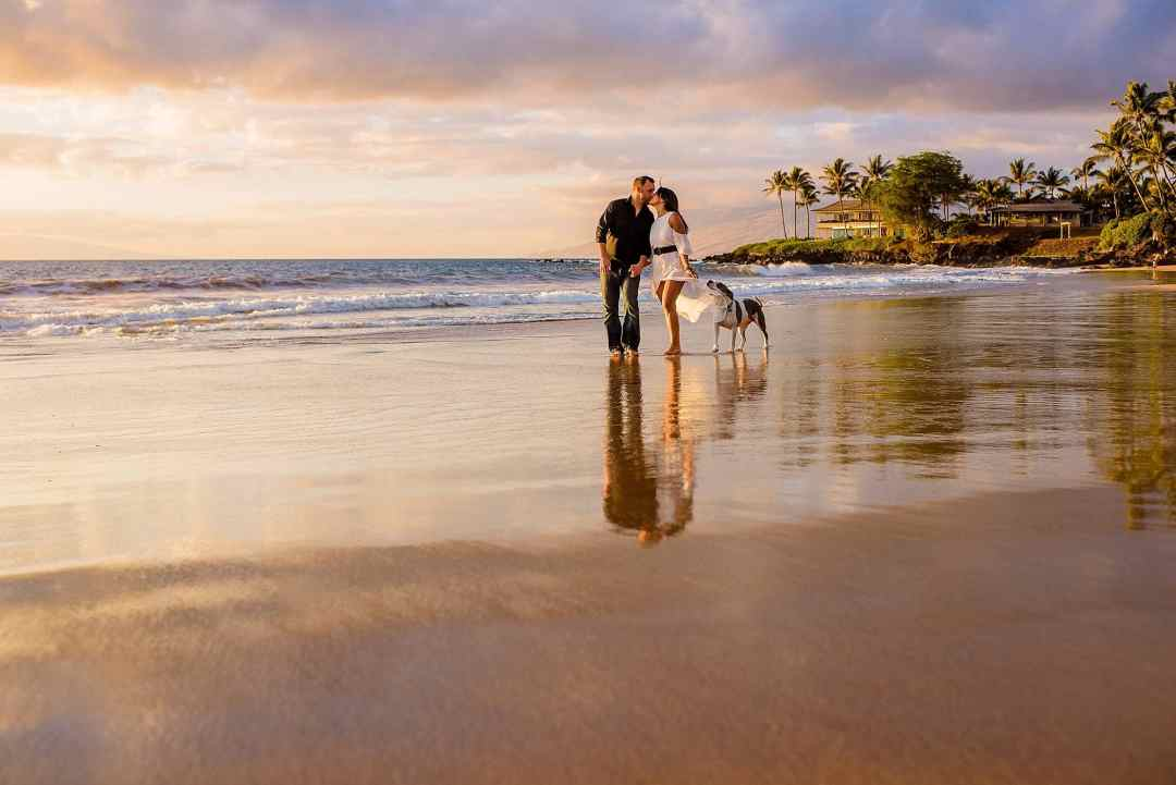 couple walking on the beach with dog in maui
