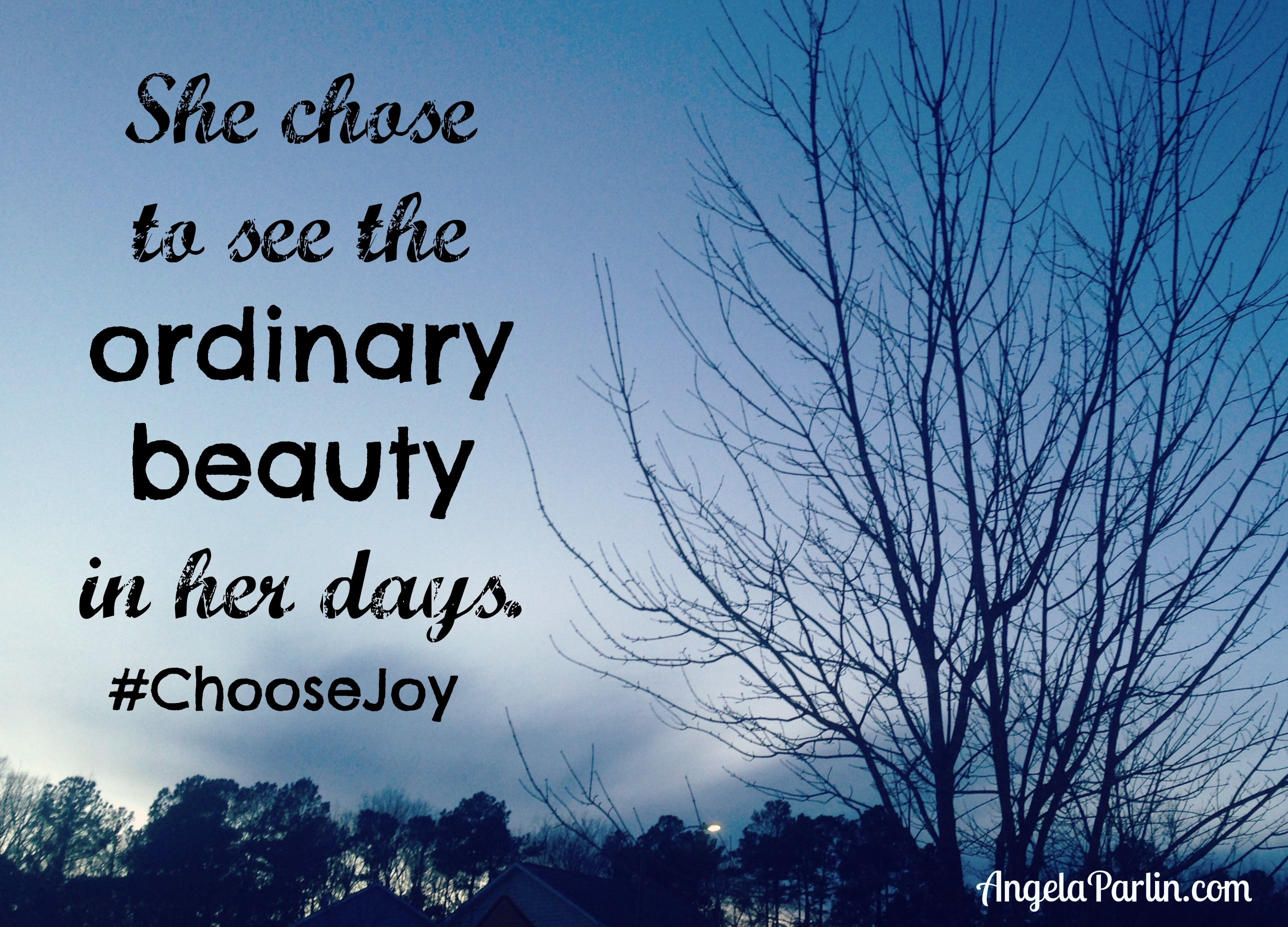 choose joy ordinary beauty