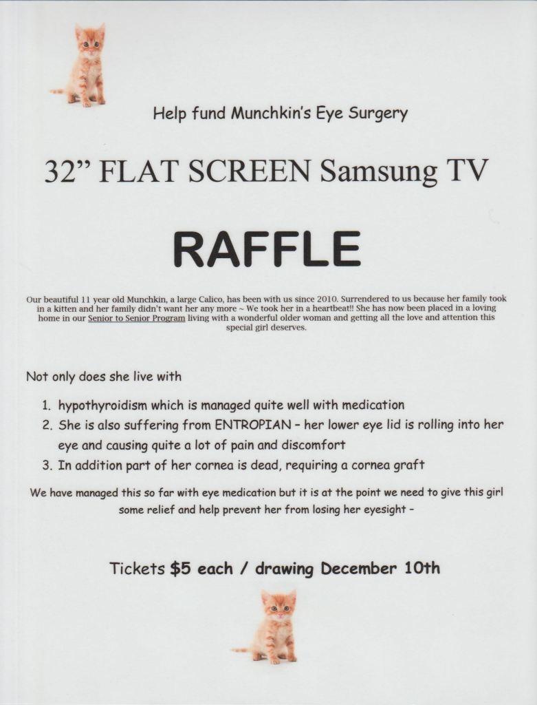 TV Raffle Flyer
