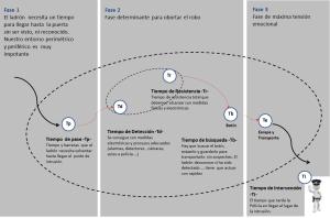 Gráfico fases del robo en una vivienda 3