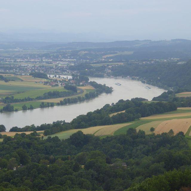 Blick vom Ostrong zur Donau