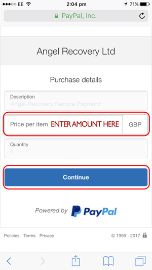 Once you have entered your details on the left, you will be take to this PayPal page. You will need to enter the amount you wish to pay.