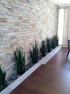 Indoor Plant Service   Interior Landscape     Las Vegas Area 4138 indoor plant design