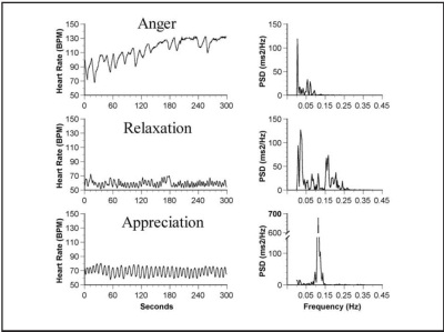 the correlation between stress and anger Relationship between anger expression and stress in predicting depression journal of counseling and development, 72, 91-94  the relationship between anger and.