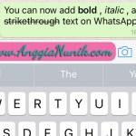 Cara Menulis Pesan Menjadi Tebal, Miring dan Coret di WhatsApp