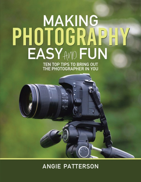 angie patterson making photography easy and fun front cover