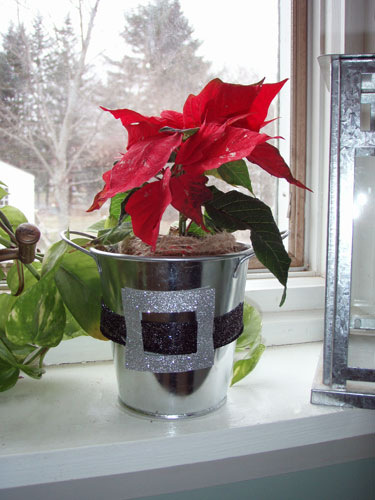 Poinsettia In Santa Belt Buckle Pot