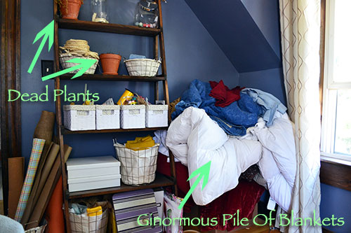 Guest Room Mess Part 2