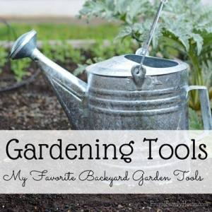 Transitioning The Garden | angiethefreckledrose.com