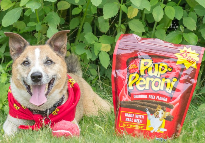 Beef Up Your Summer With Pup-Peroni
