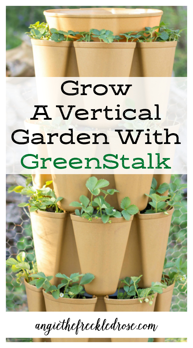 Give, Grow and Garden With Greenstalk! | Angie The Freckled Rose