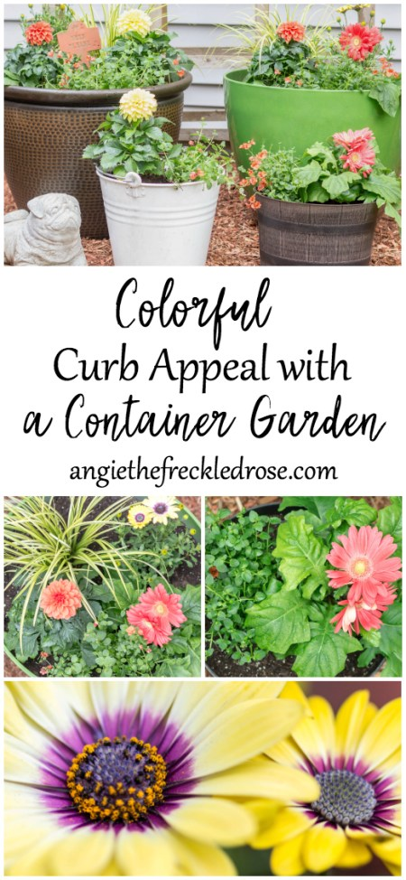 Add Colorful Curb Appeal with a Container Garden | angiethefreckledrose.com