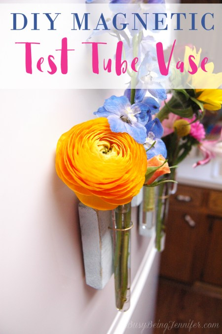DIY Magnetic Test Tube Vase | Busy Being Jennifer