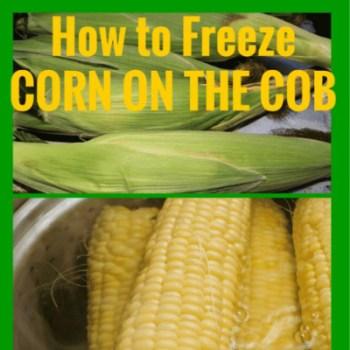 How to Freeze Corn on The Cob - Homemade Food Junkie