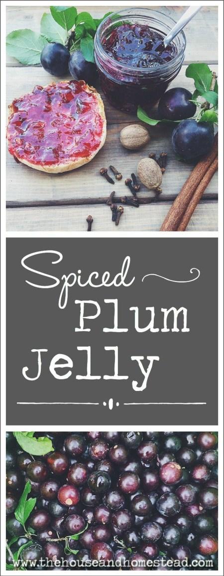 Spiced Plum Jelly | The House & Homestead
