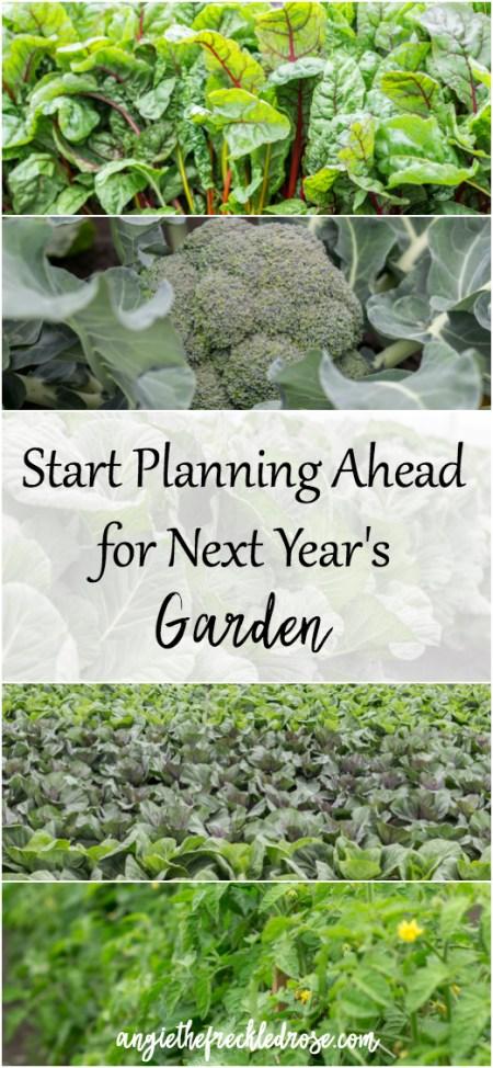start-planning-ahead-for-next-years-garden