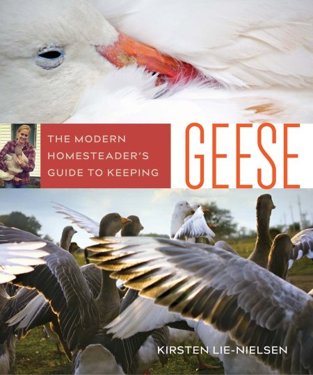 A Book Review & $200 Giveaway: The Modern Homesteader's Guide to Keeping Geese