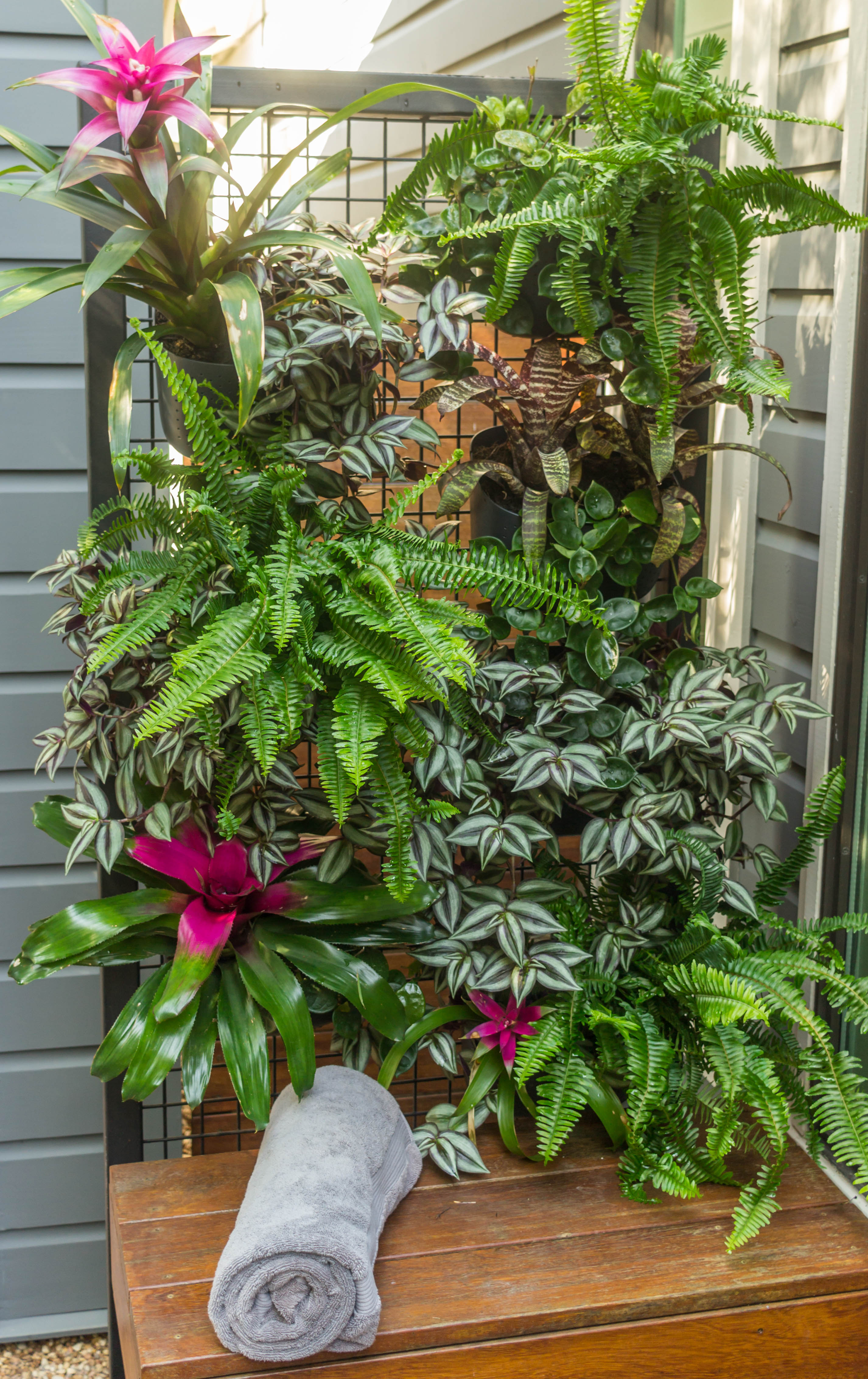 GO VERTICAL WITH A LIVING WALL How