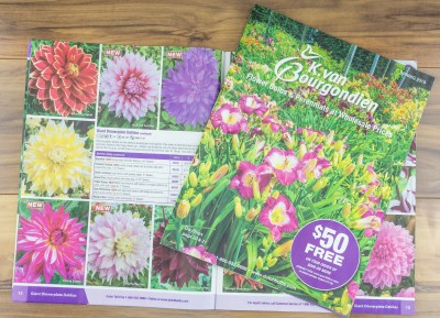The Ultimate List of Seed Catalogs and Plant Companies | Angie The