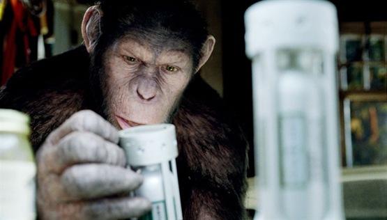 La planète des singes les origines - 7