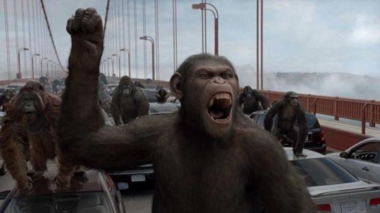 La planète des singes les origines - 8