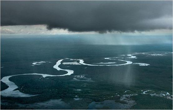 Amazonia - 4