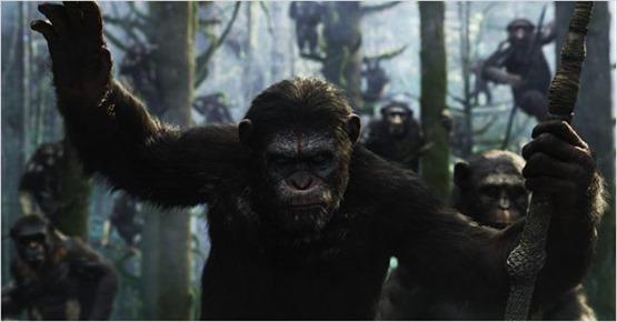 la planète des singes l'affrontement - 6