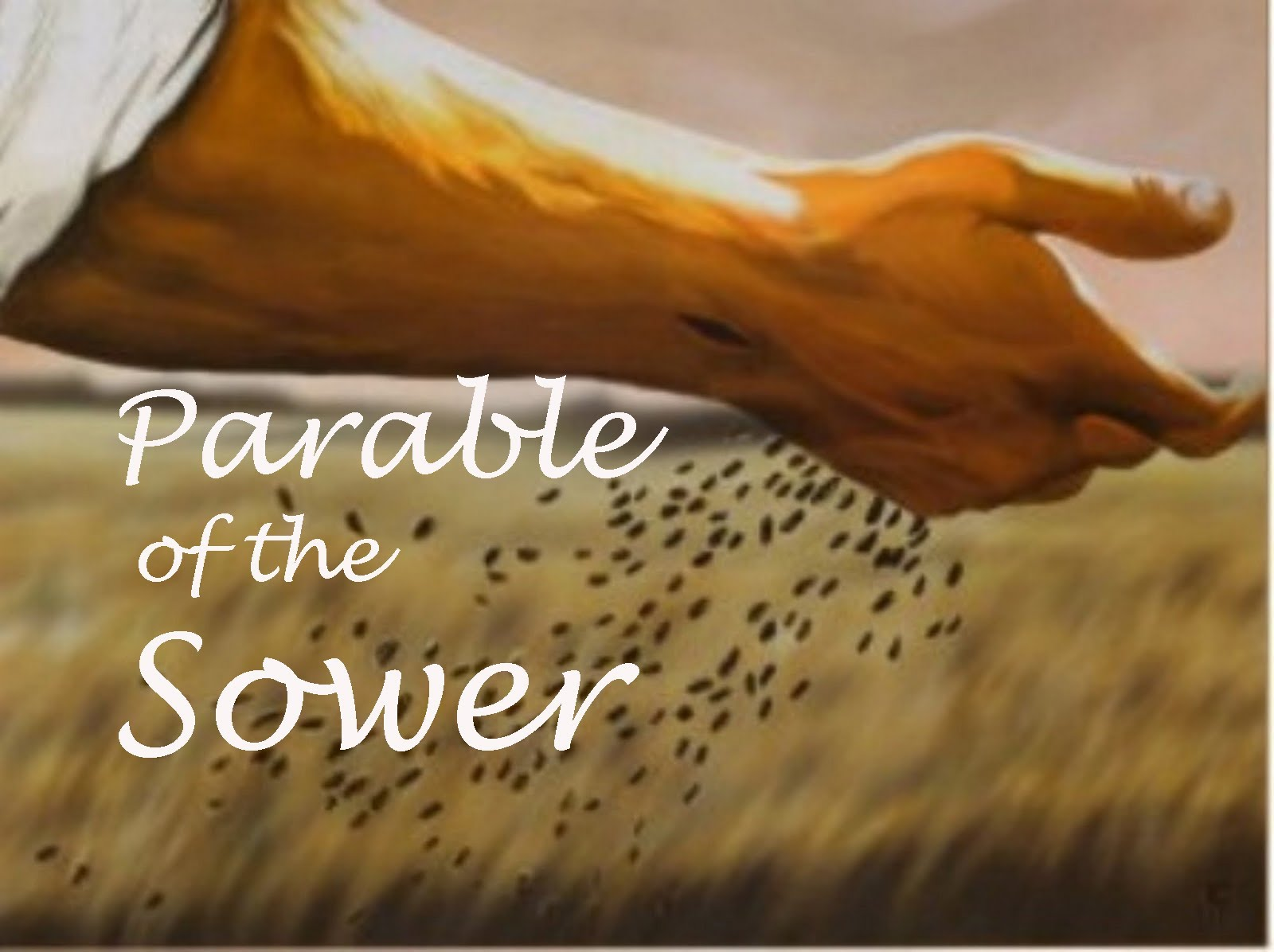Sermon Notes – Sunday 16th July – Parable of the Sower « The Anglican  Church in Bordeaux