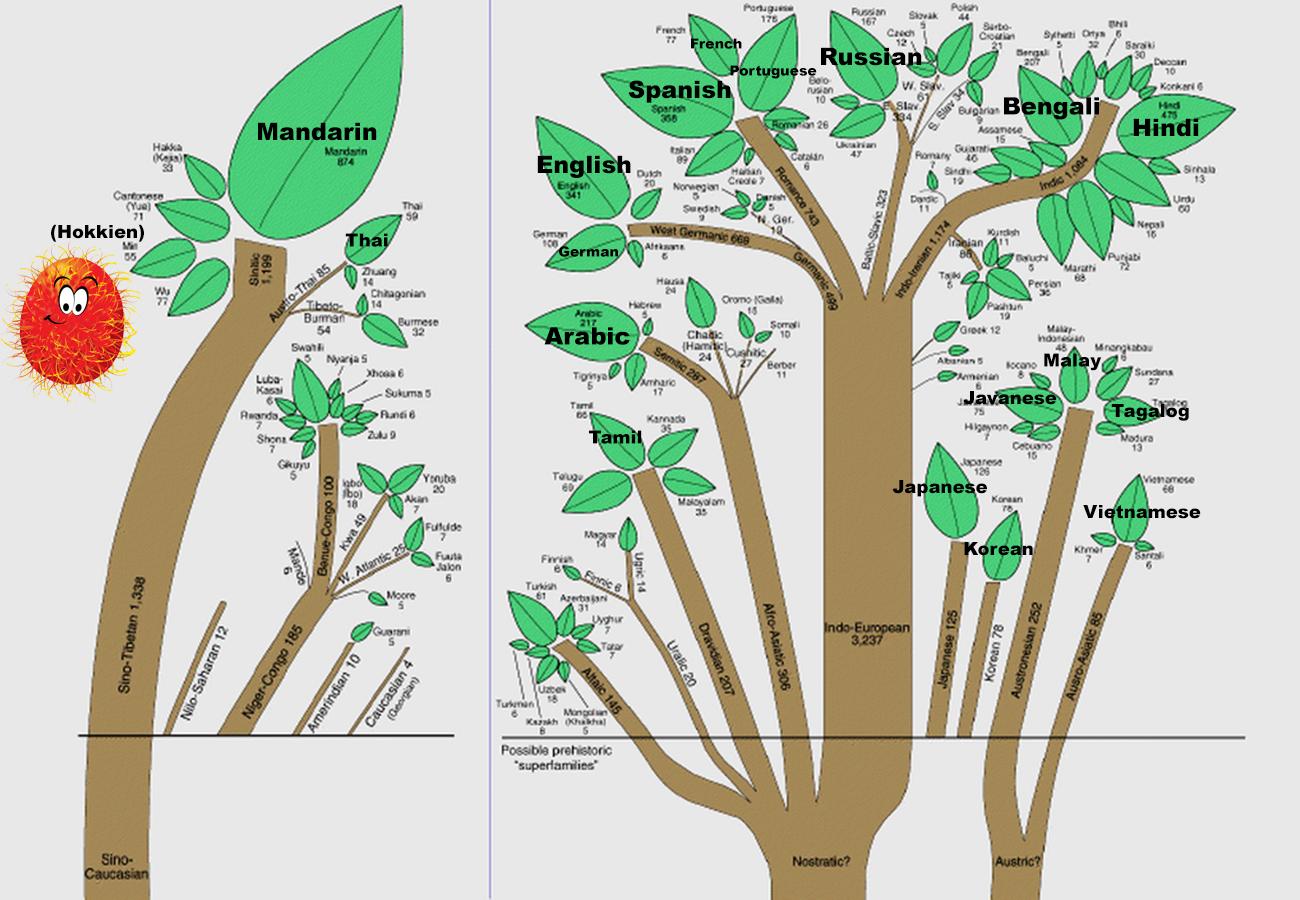 The Root of All Human Languages - angmohdan com