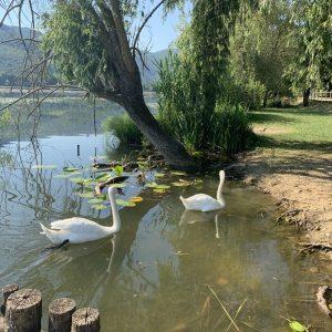 Lago di Fimon – Giro del lago con i bambini