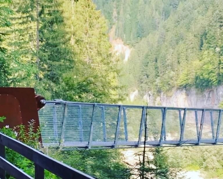 Read more about the article Ponte a Funi Sospeso Val de Riva