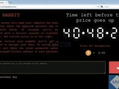Untitled design 28 - BadRabbit: nuovo ransomware colpisce i paesi dell'est Europa