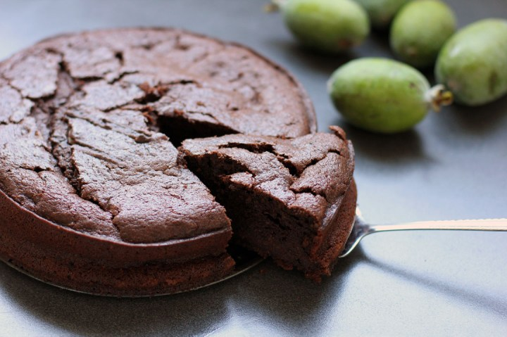 Chocolate Feijoa Cake Wide