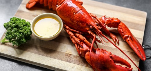 Boiled Lobster 1