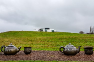 Zealong Tea Estate (Hamilton, New Zealand) 1