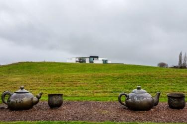 Zealong Tea Estate (Hamilton, New Zealand) 1