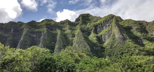 Kualoa Ranch and Zipline (Kaneohe, Hawaii) 1