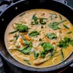 Thai Red Chicken Curry 1