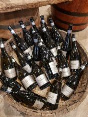 Château Tanunda Winery 12