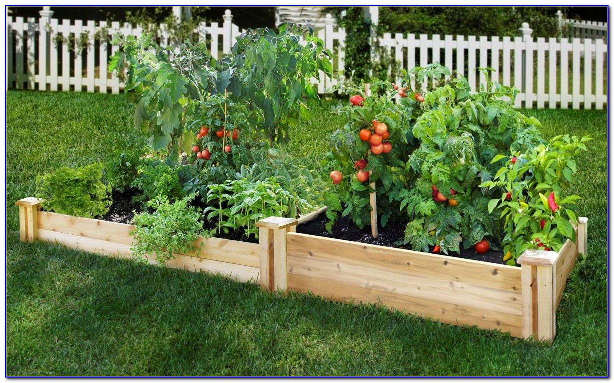 Raised Bed Garden Kits Ace Hardware Download Page Home
