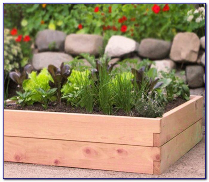 Building Raised Garden Nz