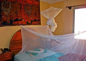 It is better to get a rectangular mosquito net that you can attach from 4 corners (not from a center ring)