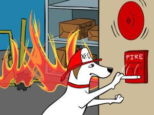 perro bombero