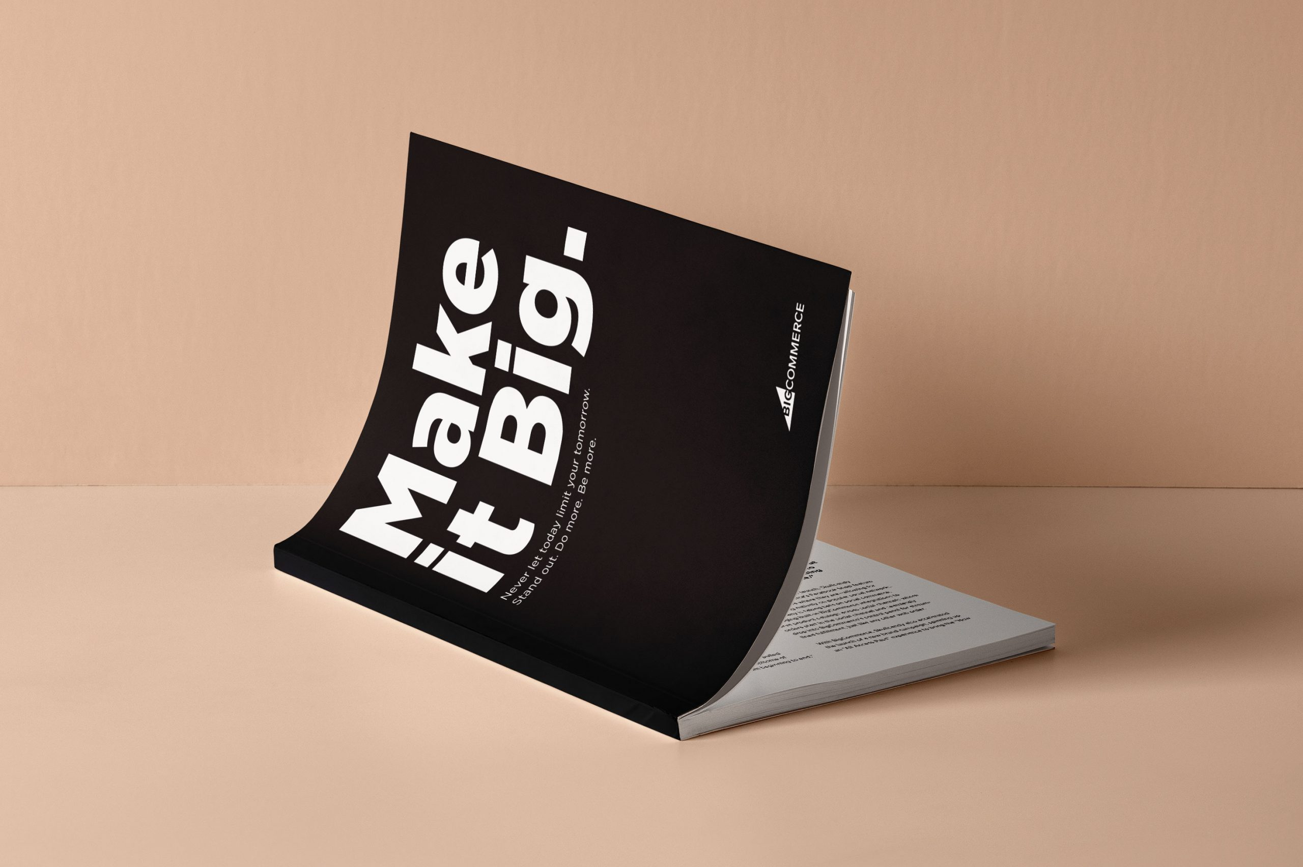 bigcommerce make it big brand book cover