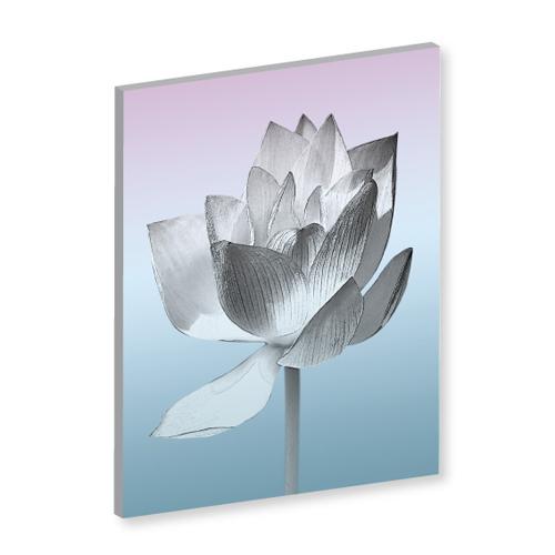 Wandbild Lotusblume, Lotus, Lotusblühte, Lotusblume, Bilder für Ihr Wohlbefinden, Wellness für die Seele, Wanddeko, Feng Shui Bilder, Lotusblume, SPA-Bilder, Wellness Bilder, Leinwandbild, Leinwandbilder, Energiebilder