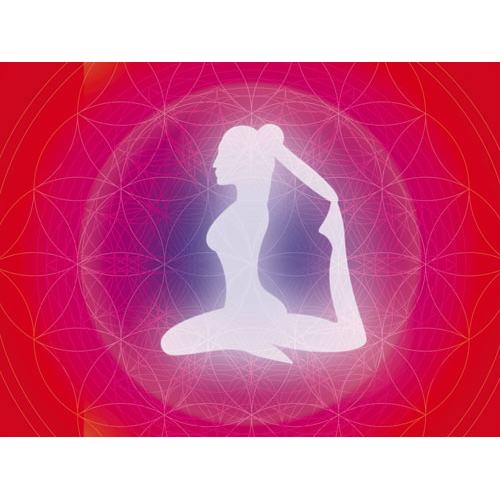 Wandbilder yoga, yogastudio, wandbild rot, wandbild pink, wanddeko, bilder yoga, yogabild, yoga taube, yoga Kapotasana